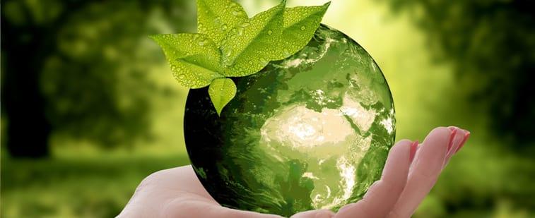 8 astuces faciles pour devenir éco-citoyen